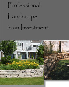 Professional Landscape is an Investment